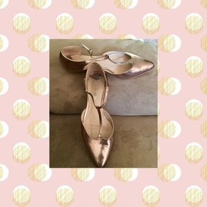 Metallic Boden T-Strap Pointy Toe Flats